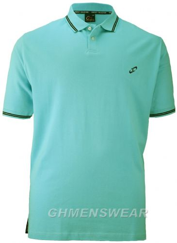 PERFECT COLLECTION TIPPED POLO SHIRT - TURQUOISE